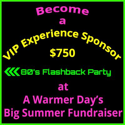 Big Summer Fundraiser VIP Experience Sponsor $750